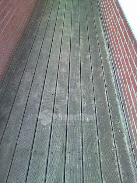 Decked path prior to cleaning